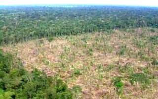 Área desmatada na Amazônia. (Fonte: Bom Dia Brasil).